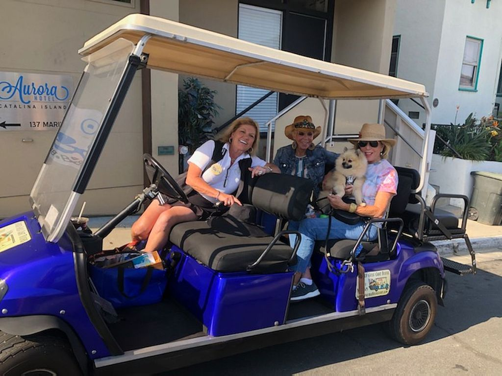 Avalon Golf Cart Tours